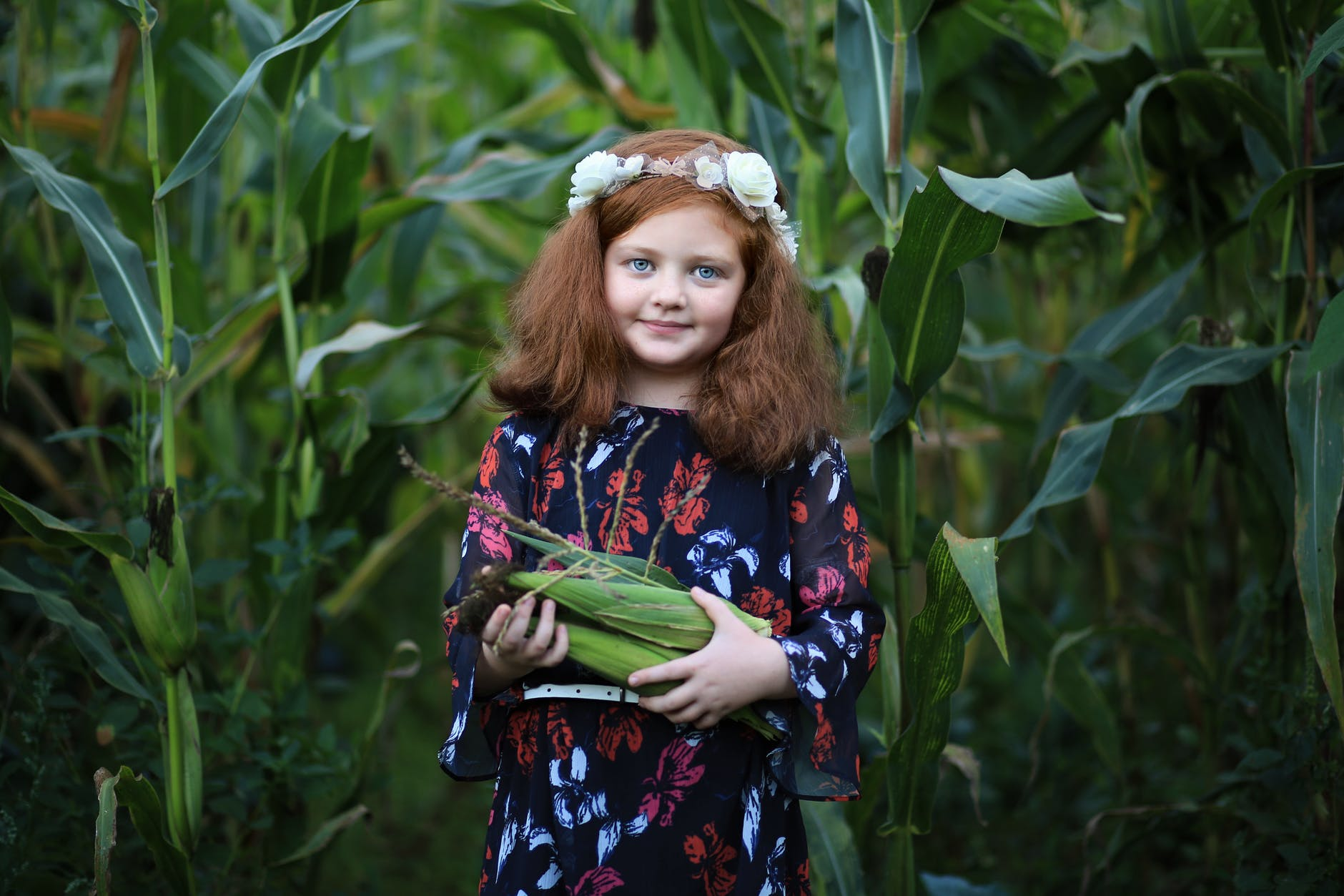 girl standing in a cornfield carrying corn